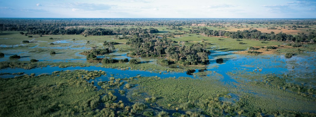 botswana-travel-african-safaris-honeymoon-family-holiday-bespoke-specialized-wildlife-boating-african-wild-animal-big-five