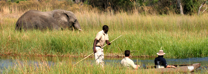 Botswana-luxury-safaris-african-wildlife-tours-bespoke-holiday-venue-boating-elephants-family-honeymoon-wild-paradise-boating-travel-specialists-okavango