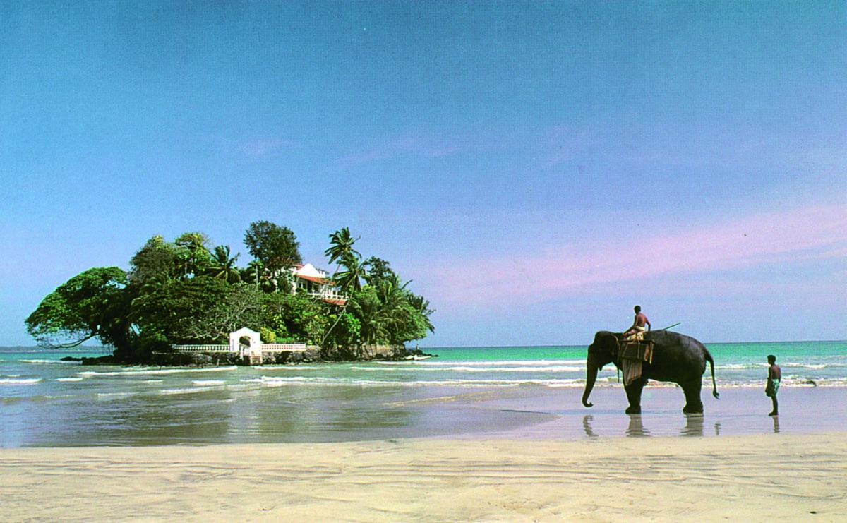 Sri Lanka Guided Tours