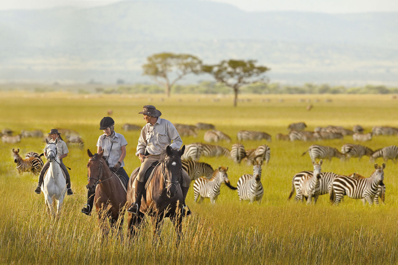 Time For Travel Tailor Made Luxury Safari Holidays